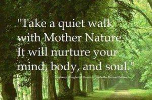 Mind-Walk Anahatazwolle